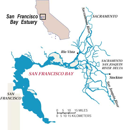Ecology Contaminants San Francisco Bay Delta Map